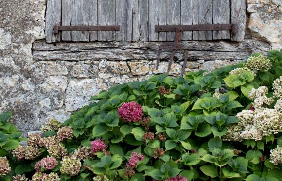 Photo mur de La ferme
